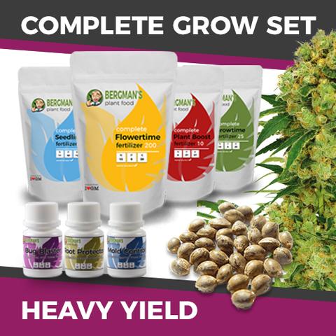 Cheap High Yield Cannabis Seeds
