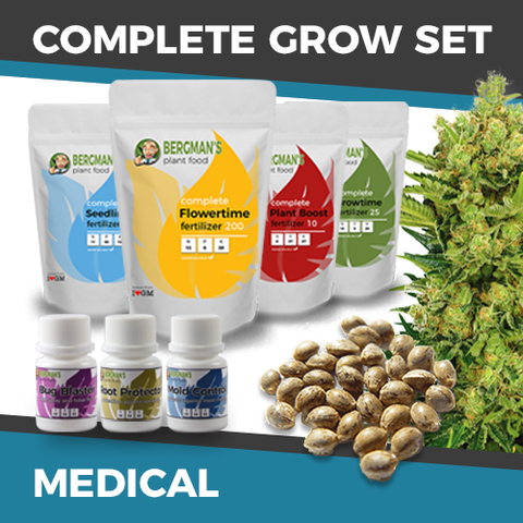 Cheap Medical Cannabis Seeds