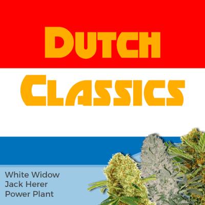 Dutch Classics Mixpack Cannabis Seeds