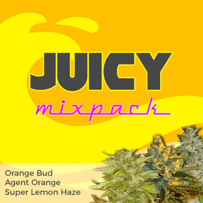 Juicy Mixpack Cannabis Seeds