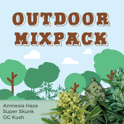 Outdoor Mixpack Cannabis Seeds