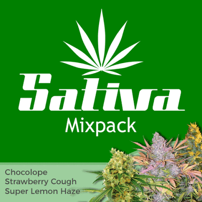 Sativa Mixpack Cannabis Seeds