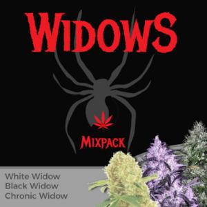Widow Seeds Mixpack
