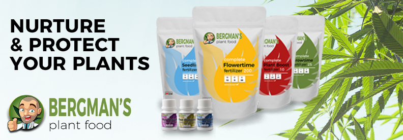 Bergmans Marijuana Plant Food