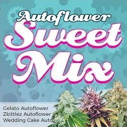 Autoflower Sweet Seeds Mix